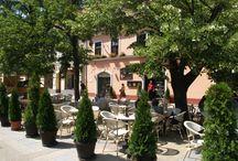 Belga Étterem / Nyáron a belső kerthelyiség, a Piac utcai korzóra kihelyezett, élőzenés rész jelenti az étterem legfőbb vonzerejét. Debrecenben itt fogyasztható a belga sörök legszélesebb választéka.