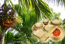 Ecoreca / Ecoreca is an Eco-friendly company, who manufacture and supplies areca plates & bowls, which are made from areca leaves without harming trees & nature. Our plates & bowls are biodegradable & made from 100% natural fiber of Areca leaves. We do maintain a proper process-management to make sure, our products meets the International standard quality - We are the activist, who does not says that the river is dirty. We cleans up the river.