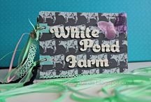 Mini albums with ribbon / Mini scrapbook albums, handmade memory albums and keepsake books all featuring ribbon