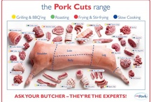 Pork recipes / by Cheryl Engstrom