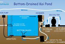 Koi Pond, Filter etc