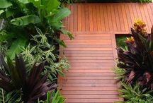 Subtropical Gardens/ Plants