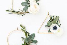 ZAXE INSPIRATION┃Plantes / Que serait une maison sans plante?