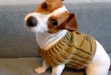Sweaters with dogs in them