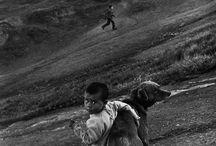 stan Afganii