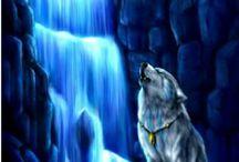 lobos y otros animales