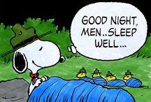 Snoopys world