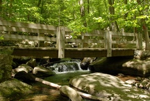 nj state parks / by Deb Sprung