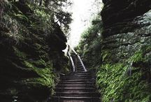 Stairway to heaven! Dschungel or Saxony  tell me in the comments!
