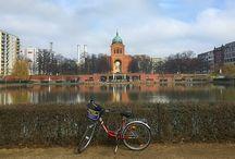 Rospi in Germania - Toads in Germany / Tips di viaggio sulla Germania, viaggiare in Germania con bambini, weekend a Berlino, cosa fare a Berlino
