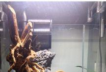 Aquarium:- Nano Cubes