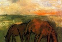 kone a konské kraje
