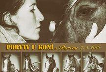 Lidé & koně