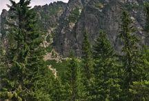 Tatry Wysokie / Słowacja / góry, jeziora, strumyki, wodospady...
