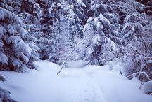Winter Ghost (Pilat) / Winter in France