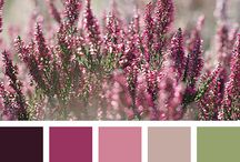 Colors / color trends