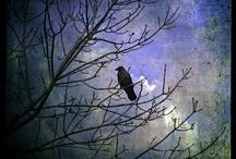 Haunting Artwork / Art that conveys a spooky or eerie feeling.