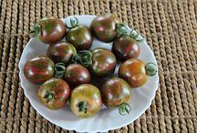 Rosii 2014 -Tomatoes