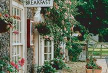 My Bed & Breakfast