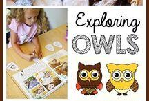 Homeschooling -Birds & Animals Files