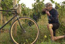 Bikes / by Barbara Trotta