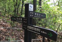 Bring It On Trail Run Road Sign 14 to Uisangbong(peak) / 의상봉 이정표 Road Sign to Uisang peak  GPS: 37.650150  126.954086 고도(Altitude): 209m