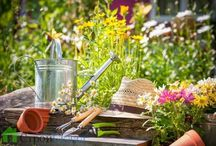 le jardin du jardinier