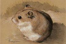 hamster schilderen