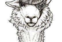 Llama love you