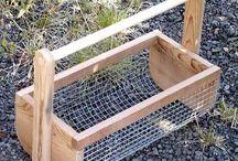 Alaskan home gardening tips and tricks