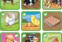 Domácí zvířata + farma