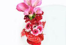 květiny / květinové vazby