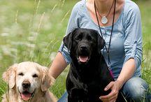 HINTER DEN KULISSEN von KENSONS for dogs / Ein Blick hinter die Kulissen - auf uns, unsere Arbeit, unsere Leidenschaft, unsere Liebe zu unseren Fellnasen und vielleicht auch in unsere Freizeit ;)