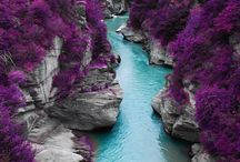 Scotland Trip / by Lisa Jones