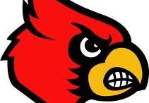 Louisville Cards