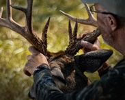 GrowingDeer.TV / Videos and info related to hunting and managing habitat for white-tailed deer, wild turkey, and other game.
