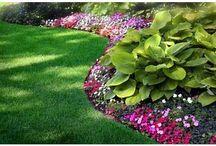 Landscape Front Yard Designer
