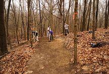 Hiking / by Cynthia Thomas