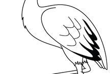gólya