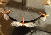 Wally Wing Flies