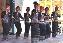 Thai Culture and Food Festival Melbourne 2015