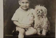 Régi képeslapok, kutyák, kedvencek
