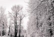 Snow / Ice / Fine art photographs of snow and ice.