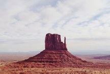 Coyote / The west, The desert -