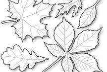 Шаблоны листья, цветы, бабочки