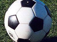 Palloni dei 15 Sport con la Palla / I 15 oggetti sferici dei 15 Sport con la Palla
