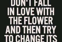 Love that flower.