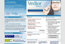 Vedior / http://vedior.com/ Re-diseñado (con lineamientos muy estrictos) y programado en su totalidad con .ASP