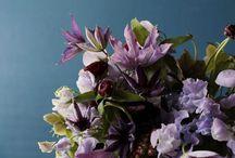 flower stuff / by Samantha McKay