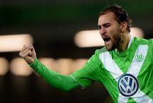فولفسبورغ - VFL Wolfsburg / صور فولفسبورغ